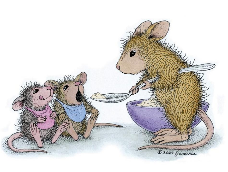 мышки и каши