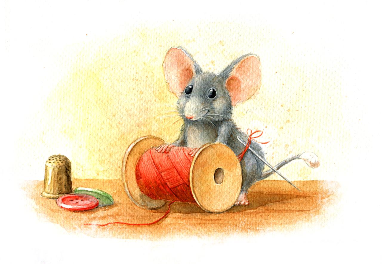 мышка и катушка